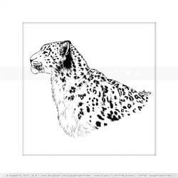 Snow Leopard Poise