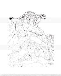 Snow Leopard - The Mountain Watch (lineart)