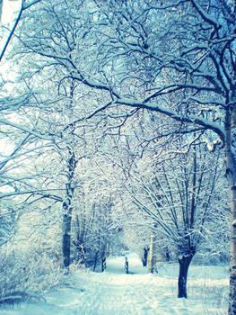 cold days III