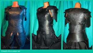 Female elven armor set