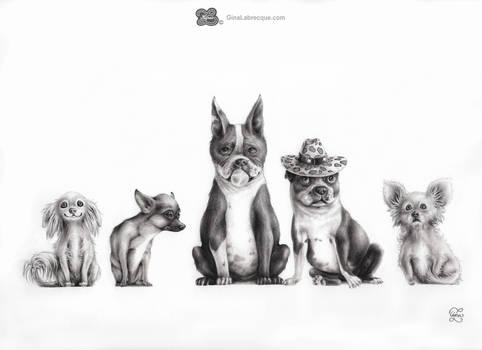 Gram's Dogs