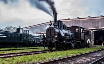 Hungarian Railways 204