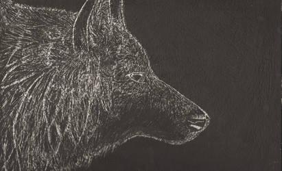 scratch art wolf teresa levesque by purpleforrestfires