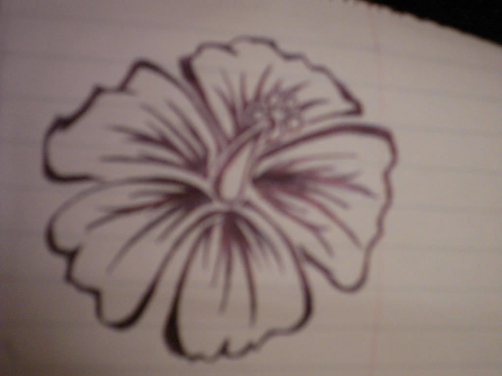 Hibiscus Tattoo Drawing: Hibiscus Tattoo By Elyzah On DeviantArt