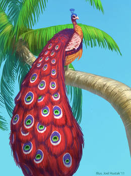 Peacock in a Palmtree