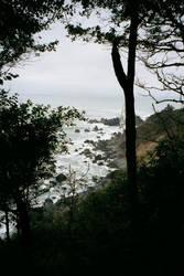 Santa Cruz by HiddenMask24