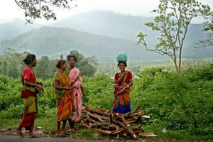 Firewood pickers by bingbing51