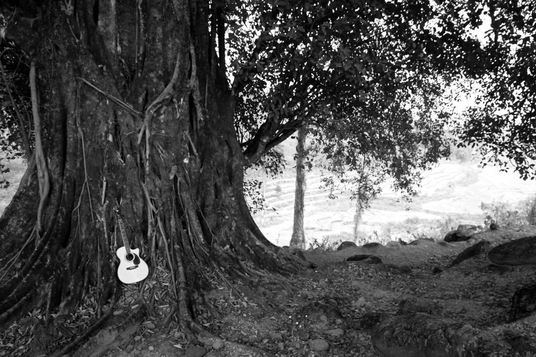 Wood ........... by bingbing51