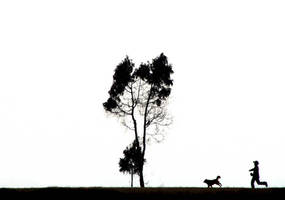 A man, a dog and a crow by bingbing51