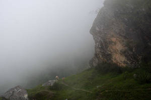 One misty monsoon morning by bingbing51