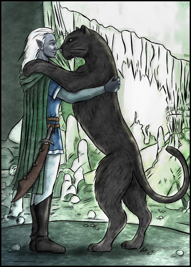 drizzt_and_guenhwyvar_by_triola.jpg