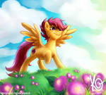 MLP - Time to spread wings