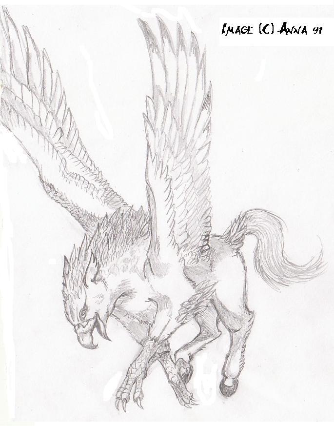 buckbeak coloring pages - photo#26
