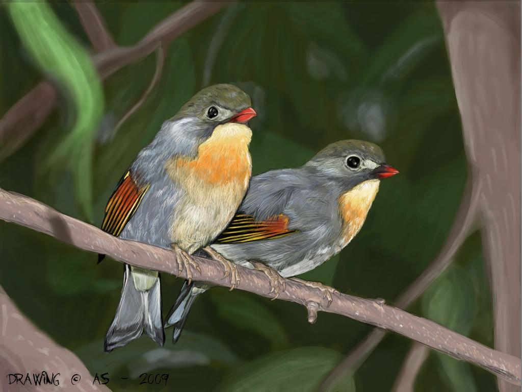 Nightingale Suomeksi