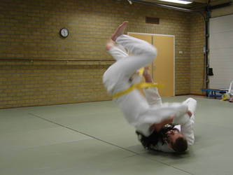 judo by sillentkil
