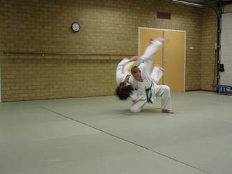 judo1 by sillentkil