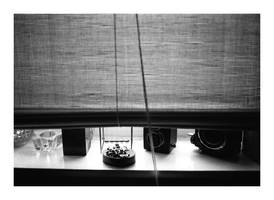 on my windowsill by redux