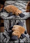Platypus stuffed toy