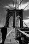New York N 6