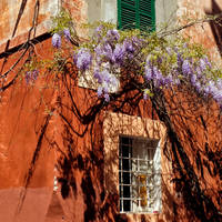 Trastevere colours