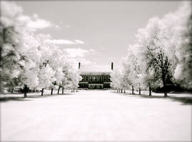 UMaine in Infrared by suricata5