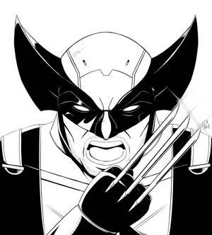 Wolverine by robertamaya