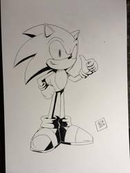 Sonic full body (Bristol) by robertamaya