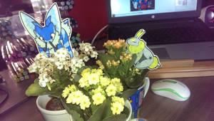 [Beepup] Such Flowers, Much Bloom!