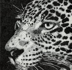 Jaguar on dots by Chipilina21