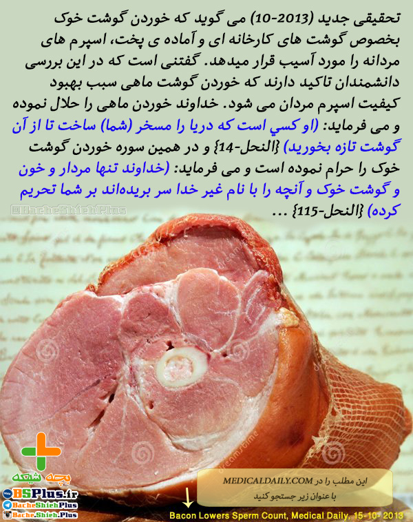 Bacon Lowers Sperm Count by iranamc