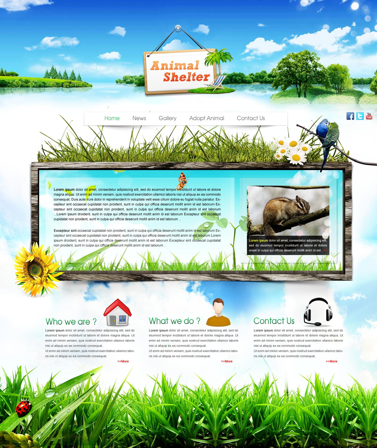 Animal Website Images Hewan Lucu Terbaru