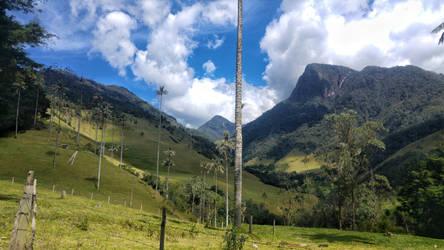 Cocora Valley (Salento) , Colombia by Crazy-Trip