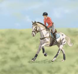 Gallop in Ocala