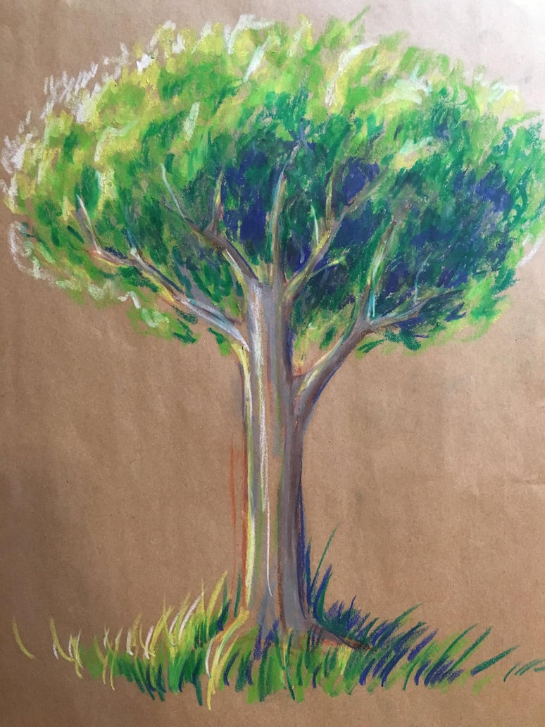 A Tree by 0torno