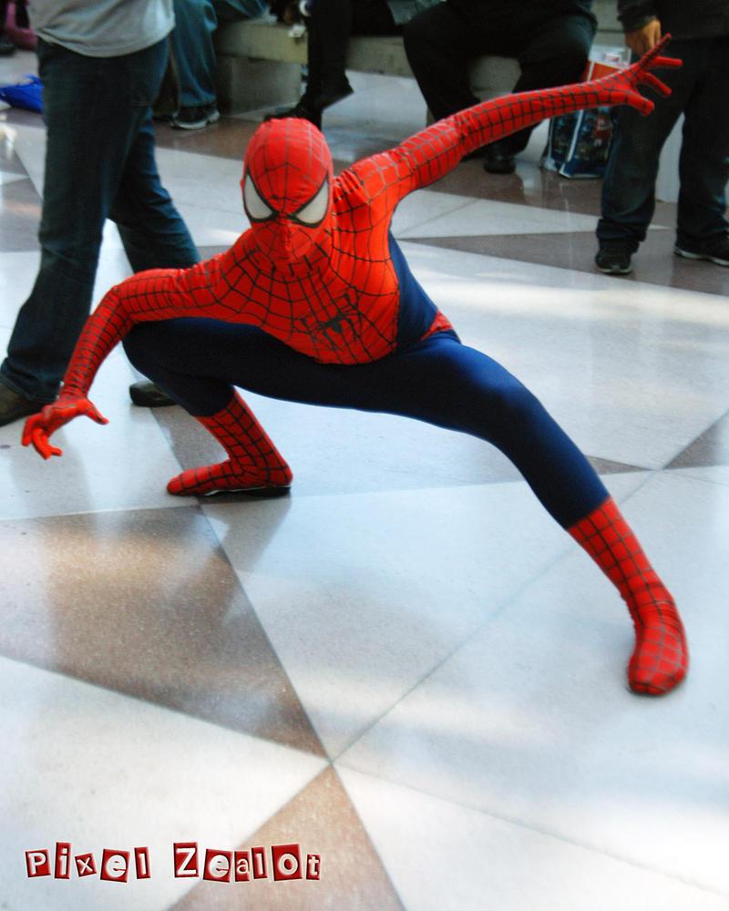 Spider-Man by PixelZealot