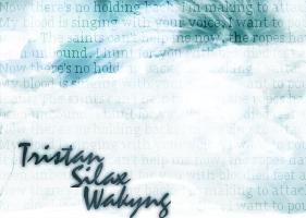 Wakyng by Magik3