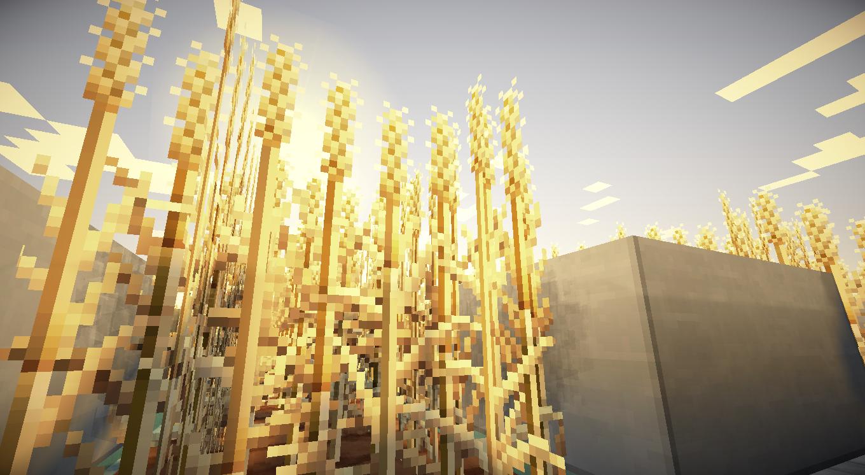 Minecraft Wheat Minecraft at it's fine...