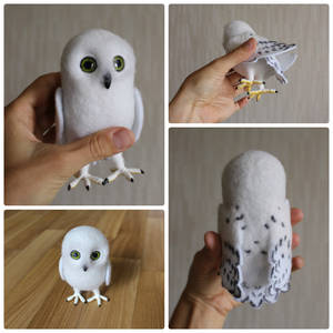 Tiny snowy owl