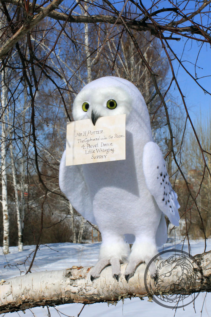 Hedwig owl by sillykoshka on deviantart - Chouette hedwige ...