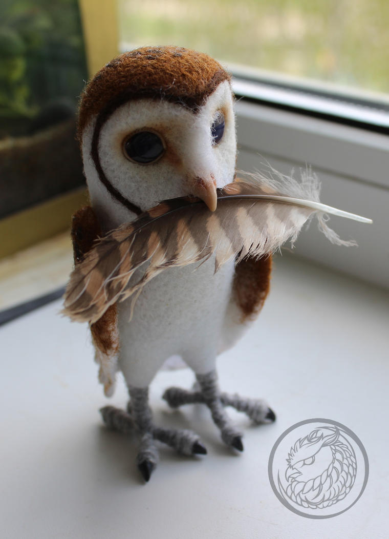 Tiny barn owl is going to build a nest :) by Sillykoshka