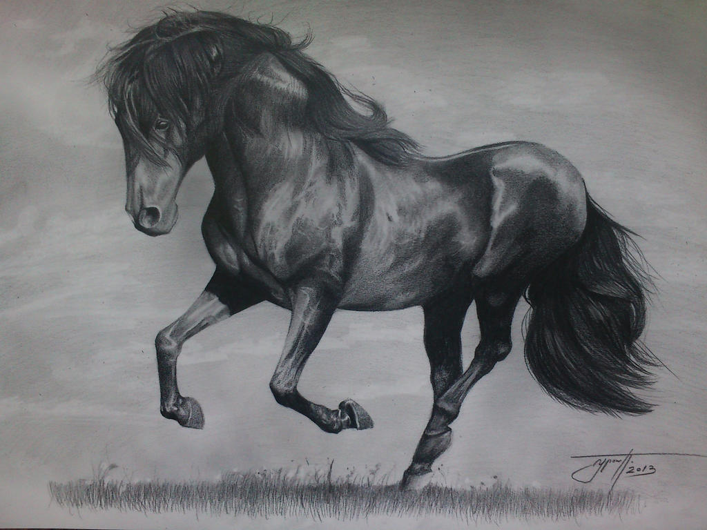 Realistic Horse Drawing Horse drawing by urosh1991Realistic Horse Drawings