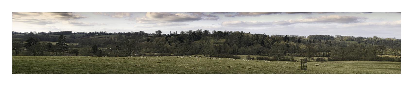 Spring Panorama by GazDabbs