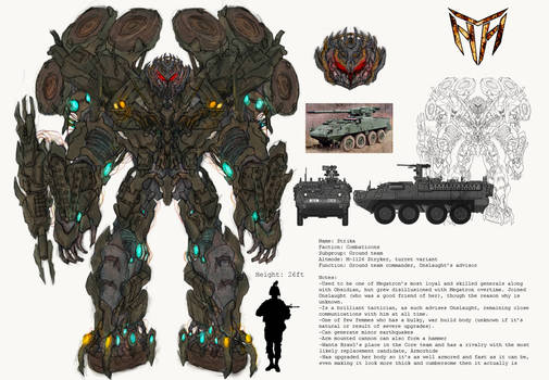 Project Combaticons: Strika