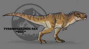 Jurassic Park: Tyrannosaurus rex Doe
