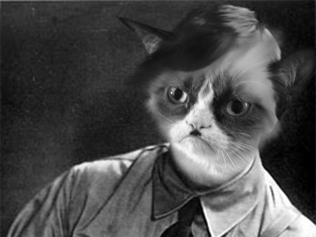 hitler_cat_is_so_grumpy_by_mortmanga-d5gk67t