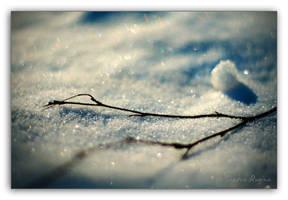 Winter by Behindmyblueeyes