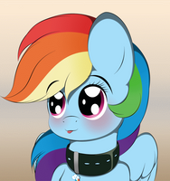 Dashie has a new collar by V-D-K