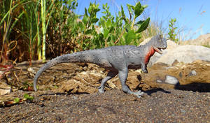 Carnotaurus Sastrei (Battat)