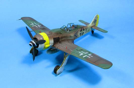 1/72 FW190 A-9 (Hobbyboss) I