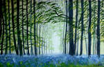 Bluebell wood by WendyMitchell